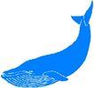 海洋动物2175,海洋动物,动物,