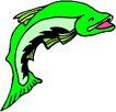 海洋动物2185,海洋动物,动物,