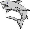 海洋动物2187,海洋动物,动物,