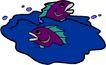 海洋动物2197,海洋动物,动物,