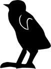 鸟类动物1419,鸟类动物,动物,