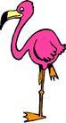 鸟类动物1425,鸟类动物,动物,