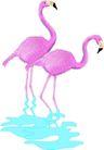 鸟类动物1429,鸟类动物,动物,