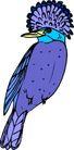 鸟类动物1430,鸟类动物,动物,