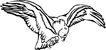 鸟类动物1437,鸟类动物,动物,