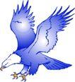 鸟类动物1439,鸟类动物,动物,
