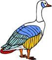 鸟类动物1448,鸟类动物,动物,