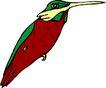 鸟类动物1464,鸟类动物,动物,
