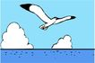 鸟类动物1468,鸟类动物,动物,