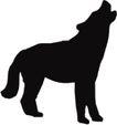 常见动物1013,常见动物,动物,
