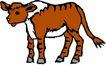 常见动物1019,常见动物,动物,