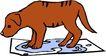 常见动物1021,常见动物,动物,