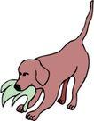 常见动物1051,常见动物,动物,