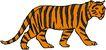 常见动物1056,常见动物,动物,