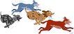 常见动物1058,常见动物,动物,