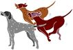 常见动物1059,常见动物,动物,