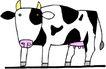 常见动物漫画1186,常见动物漫画,动物,
