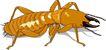 昆虫蝴蝶1047,昆虫蝴蝶,动物,