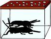昆虫蝴蝶1081,昆虫蝴蝶,动物,