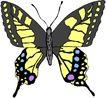 昆虫蝴蝶1085,昆虫蝴蝶,动物,