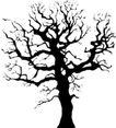 树木1572,树木,植物,