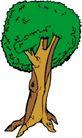 树木1578,树木,植物,