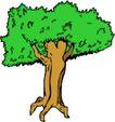 树木1580,树木,植物,