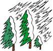 树木1585,树木,植物,