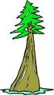 树木1611,树木,植物,