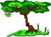 树木1612,树木,植物,