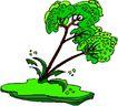 树木1613,树木,植物,
