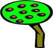树木1616,树木,植物,