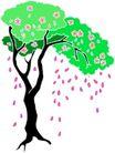 树木1618,树木,植物,