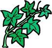 花草2924,花草,植物,