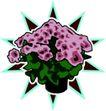 花草2932,花草,植物,