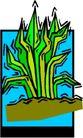 花草2969,花草,植物,