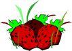 蔬菜水果2618,蔬菜水果,植物,