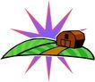 农业机械与庄稼0495,农业机械与庄稼,植物,