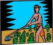 农业机械与庄稼0497,农业机械与庄稼,植物,