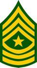 军队徽章0258,军队徽章,军事科学,