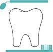 牙齿0072,牙齿,身体器官,