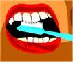 牙齿0075,牙齿,身体器官,