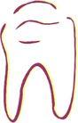 牙齿0078,牙齿,身体器官,