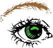眼睛0032,眼睛,身体器官,