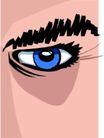 眼睛0058,眼睛,身体器官,