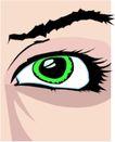 眼睛0059,眼睛,身体器官,