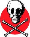 骨骼0140,骨骼,身体器官,