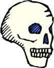 骨骼0153,骨骼,身体器官,