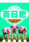农业0008,农业,行业PSD平面模板,肉猪 饲料 乳猪料 配合料  肥猪