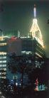 旅游宾馆0010,旅游宾馆,行业PSD平面模板,树木 城市风光 灯光